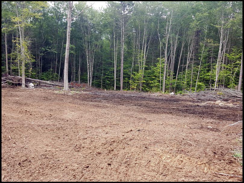 jdrdeerslayer's DeerBuilder embedded Photo