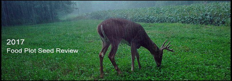 Pat Lefemine's DeerBuilder embedded Photo